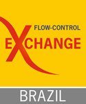 logo Flow Control Exchange Brazil